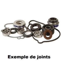 KIT JOINTS REPARATION POMPE A EAU HOT RODS KX 85 01/17